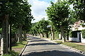 Saint Remy les Chevreuse Avenue Guy de Coubertin 2.jpg