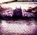 Salinaspúrpura.png