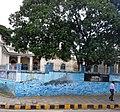 Sanskrit College (cropped).jpg