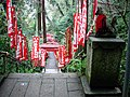 Sasuke Inari Shrine stairs.jpg