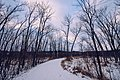 Savanna Trail - Winter at William O'Brien State Park, Minnesota (38414061305).jpg