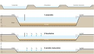 Waste stabilization pond - Image: Schematic of the Waste Stabilization Pond (WSP)