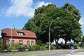 Schleswig-Holstein, Drage, Naturdenkmal NIK 8433.JPG