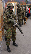 Schweizer Armee Füs Gr 2
