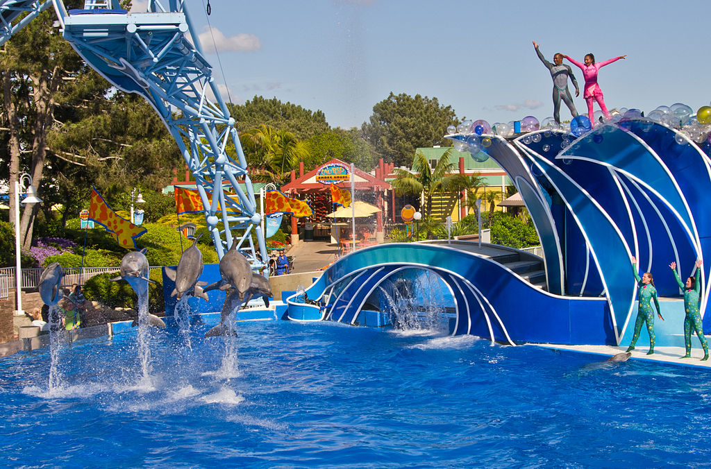 Hotels Near Seaworld