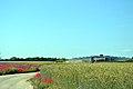 Seestadt Aspern (9076192484).jpg