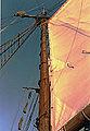 Segelschiff-Amphitrite-Mast-Takelage.jpg