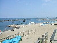 Sekiyahama Coast.jpg