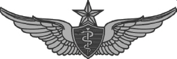 Senior Flight Surgeon Badge USA.png
