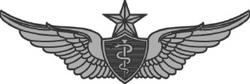 Senior Flight Surgeon Badge USA