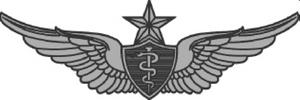 Rhonda Cornum - Image: Senior Flight Surgeon Badge USA