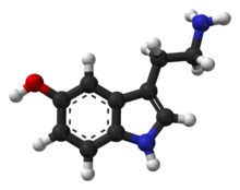 Ball-and-stick model of the serotonin molecule