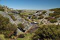 Serra Da Estrela Walk 16 (18044607789).jpg