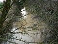 Share Ditch, Lushill, Swindon - geograph.org.uk - 302475.jpg