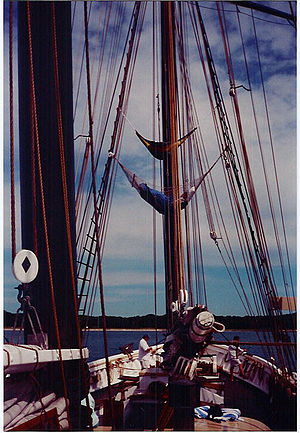 Shenandoah (schooner) - Image: Shenandoah crew sleeping in hammocks