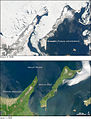 Shiretoko Peninsula and Kunashir seasonal ice comparison 2008.jpg