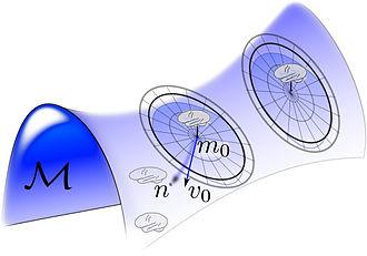 Computational anatomy - Image: Showing orbit as a surface