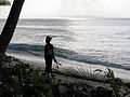 Silhouette of a woman walking along the beach carrying some coconut tree fronds. (10721330775).jpg