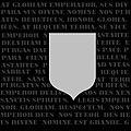 Silver guard logo.JPG