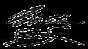 Simón Bolívar's signature