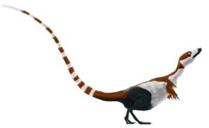 Coelurosauria - Image: Sinosauropteryx mmartyniuk solosml (flipped)