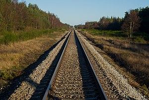 Skagensbanen - Skagensbanen rail tracks in Bunken Plantation.