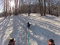 Skijoring near Blackbird Island Leavenworth Washington 2.jpg