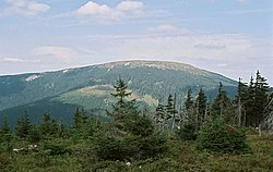 Snieznik Klodzki mountain (southern side).jpeg