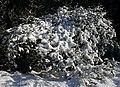 Snow Sculpture - geograph.org.uk - 334262.jpg
