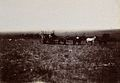 South Africa; English tourists at the battlefield at Doornko Wellcome V0037947.jpg