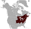 Southern Bog Lemming Synaptomys cooperi distribution map.png