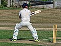 Southwater CC v. Chichester Priory Park CC at Southwater, West Sussex, England 047.jpg
