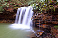 Spring-waterfall-mountain-laurel - Virginia - ForestWander.jpg