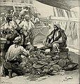 St. Nicholas (serial) (1873) (14597109129).jpg