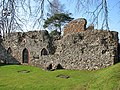 St Olave's Priory in St Olaves - geograph.org.uk - 1801631.jpg