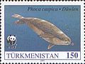 Stamps of Turkmenistan, 1993 - Caspian seal (Phoca caspica) swimming.jpg