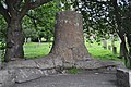 Stanhope Tree - geograph.org.uk - 2531669.jpg