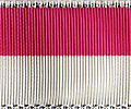 Staufer-Fuxenband.jpg