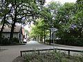 Steinhude, 31515 Wunstorf, Germany - panoramio (5).jpg