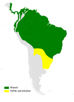 Stelgidopteryx ruficollis distribution map.png
