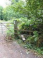 Stile in Newent Woods - geograph.org.uk - 550046.jpg