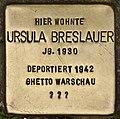 Stolperstein für Ursula Breslauer (Cottbus).jpg