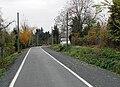 Strassenbahntrassen-radweg-2010-ffm-005.jpg