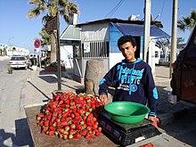 Strawberry vendor, Mahdia, Tunisia.jpg