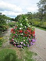 Summer and autumn planter (6163967645).jpg