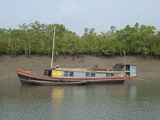 Sundarbans National Park - Patrolling boat in Sundarbans