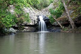 Sunshine Coast, Queensland - Kondalilla falls.jpg