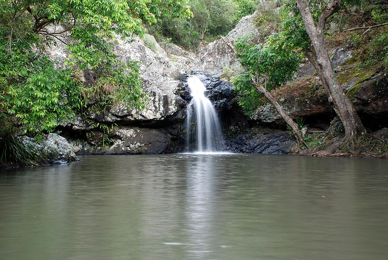 Kondalilla falls, Sunshine Coast, Queensland. Photo: Damien Dempsey/Wikimedia Commons