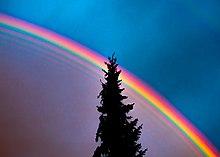 Farbe regenbogen ein welche hat Welche Farben