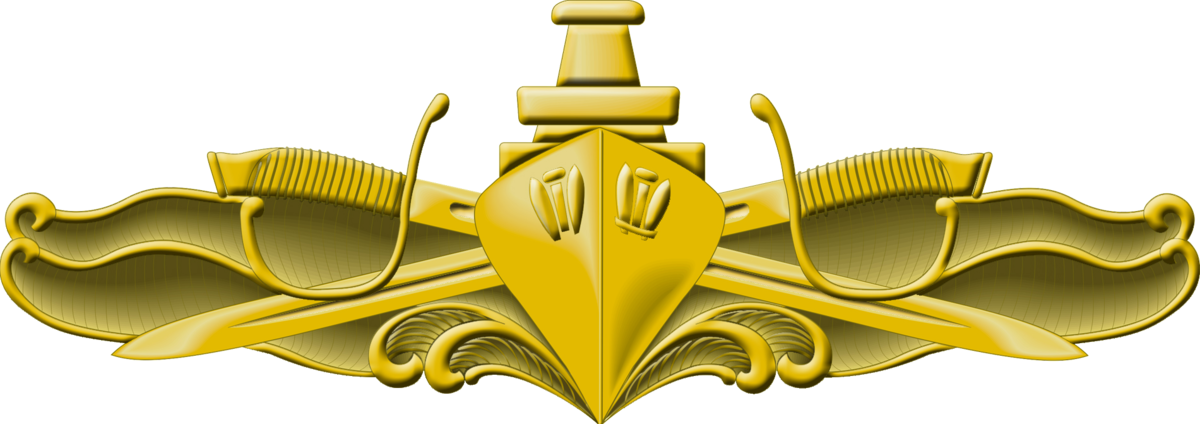 Surface Warfare Officer Pin